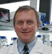 Prof. Doutor Luis Manuel Morgado Tavares